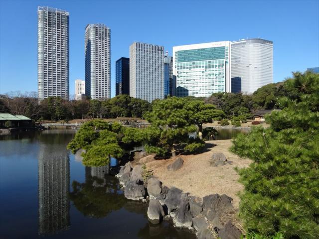 日帰り東京旅行の写真3