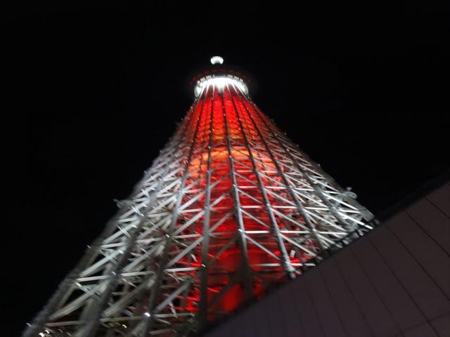 日帰り東京旅行の写真9