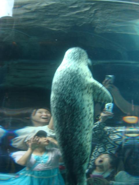旭山動物園とラベンダーの旅の写真4