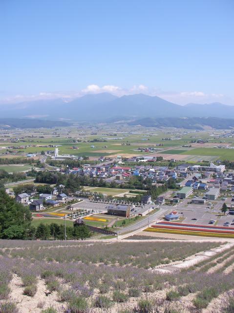 ANAマイルで親子3人北海道旅行(札幌・旭川・富良野)の写真2