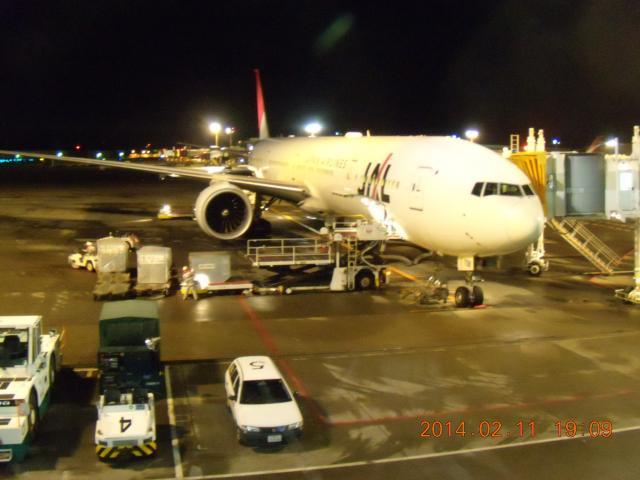 JALマイルでタスマニアへ写真2